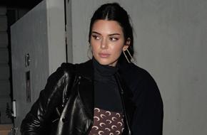 Kendall Jenner too nervous to meet Brad Pitt