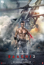 Baaghi 2 [Hindi]